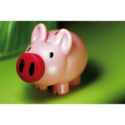 Picture of Skarbonka Piggy, różowy
